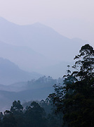 Dusk in the hill station Munnar in the state of Kerala, India