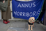 Border Terrier dog stands beside a banner reading Annus Horriboris in a satire on when the monarch said the year 1992 had been an Annus Horribilis at Westminster outside Parliament on 15th January 2020 in London, England, United Kingdom. With a majority Conservative government in power and Brexit day at the end of January looming, the role of these protesters is now to demonstrate in the hope of the softest Brexit deal possible.