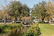 Park and canal in the Disney created community Celebration, Florida.