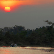 Searching for Jaguars on the Cuiaba River, Pantanal, Brazil