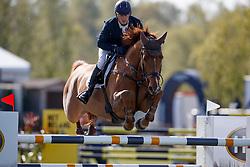Condon Anthony, IRL, Friso<br /> 7 year old horses<br /> CSIO Lummen 2017<br /> © Hippo Foto - Dirk Caremans<br /> 30/04/2017