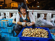 """21 DECEMBER 2015 - BANGKOK, THAILAND: A vendor sells fresh mushrooms from a stall near Pak Khlong Talat, also called the Flower Market. The market has been a Bangkok landmark for more than 50 years and is the largest wholesale flower market in Bangkok. A recent renovation resulted in many stalls being closed to make room for chain restaurants to attract tourists. Now Bangkok city officials are threatening to evict sidewalk vendors who line the outside of the market. Evicting the sidewalk vendors is a part of a citywide effort to """"clean up"""" Bangkok.       PHOTO BY JACK KURTZ"""
