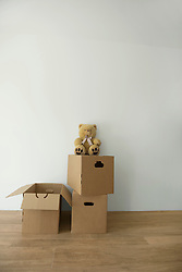 New home room packing case teddy empty