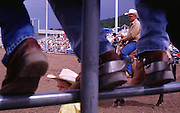 """06 AUGUST 2000 - WILLIAMS, AZ: A """"pickup man"""" watches a competitor at the 22nd Annual Cowpunchers' Reunion Rodeo in Williams, Arizona, Aug 6.  The Cowpunchers' Reunion Rodeo is held for working cowboys from the ranches in Arizona and the region. The pickup man's job is to swoop in at the end of the ride and pull the competitor off the bucking bronc or bull.  PHOTO BY JACK KURTZ"""