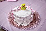 Vivian's First Birthday Parth