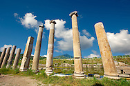 Columns around the sanctuary of Artimis with the Agora, Magnesia on the Meander arcaeological site, Turkey .<br /> <br /> If you prefer to buy from our ALAMY PHOTO LIBRARY  Collection visit : https://www.alamy.com/portfolio/paul-williams-funkystock/magnesia-site-turkey.html<br /> <br /> Visit our ANCIENT GREEKS PHOTO COLLECTIONS for more photos to download or buy as wall art prints https://funkystock.photoshelter.com/gallery-collection/Ancient-Greeks-Art-Artefacts-Antiquities-Historic-Sites/C00004CnMmq_Xllw