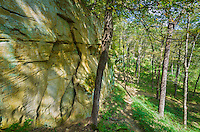 This massive sandstone wall is just around the corner from a small cave in Wildcat Den State Park.