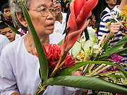 """22 JULY 2013 - PHRA PHUTTHABAT, THAILAND:  A woman waits to present flowers to a monk during the Tak Bat Dok Mai at Wat Phra Phutthabat in Saraburi province of Thailand, Monday, July 22. Wat Phra Phutthabat is famous for the way it marks the beginning of Vassa, the three-month annual retreat observed by Theravada monks and nuns. The temple is highly revered in Thailand because it houses a footstep of the Buddha. On the first day of Vassa (or Buddhist Lent) people come to the temple to """"make merit"""" and present the monks there with dancing lady ginger flowers, which only bloom in the weeks leading up Vassa. They also present monks with candles and wash their feet. During Vassa, monks and nuns remain inside monasteries and temple grounds, devoting their time to intensive meditation and study. Laypeople support the monastic sangha by bringing food, candles and other offerings to temples. Laypeople also often observe Vassa by giving up something, such as smoking or eating meat. For this reason, westerners sometimes call Vassa the """"Buddhist Lent.""""      PHOTO BY JACK KURTZ"""