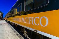 The Chihuahua al Pacifico railroad (Chepe) train arriving at San Rafael, Copper Canyon, Mexico