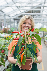 Portrait of shop assistant holding the paprica plant in garden centre, Augsburg, Bavaria, Germany