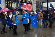 Pro-EU Remainers celebrate EU membership with A party like theres no tomorrow for one last time outside parliament, one day before Brexit Day the date of 31st January 2020, when the UK legally exits the European Union, in Parliament Square, Westminster, on 30th January 2020, in London, England.