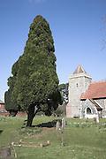 Saint Andrew church, Boyton, Suffolk, England