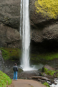 Latourell Falls (249 foot plunge), Latourell Creek, Columbia River Gorge National Scenic Area, Oregon, USA.