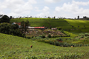 A field being farmed in rural Kenya.