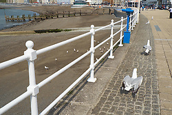 Newly painted railings, Aberystwyth promenade, Wales May 2016