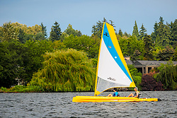 United States, Washington, Bellevue, sailboat on Lake Washington