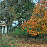Clifton Parks