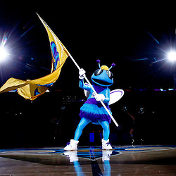January 29, 2012; New Orleans, LA, USA; New Orleans Hornets mascot Hugo waves a team flag prior to tip off of a game against the Atlanta Hawks at the New Orleans Arena.   Mandatory Credit: Derick E. Hingle-US PRESSWIRE