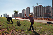 "Workers uproot indigenous desert plants to make room for a new flower bed close to a densely built residential apartment development near the Kangbashi New District of Ordos City, Inner Mongolia, China on 16 August, 2011. With an investment of over 161billion USD from the local government and revenue from the region's rich coal deposits, enough buildings have risen on the site of an old desert village to hold at least 300,000 residents, complete with ultra modern facilities and grand plazas. The district however is less than 10% occupied, dubbed the ""ghost city"", Kangbashi epitomizes China's real estate bubble and dangers in mindless investment fueled economic  growth. In 2011, the real estate price of Ordos city has dropped over 70%."