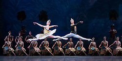 La Bayadere <br /> A ballet in three acts <br /> Choreography by Natalia Makarova <br /> After Marius Petipa <br /> The Royal Ballet <br /> At The Royal Opera House, Covent Garden, London, Great Britain <br /> General Rehearsal <br /> 30th October 2018 <br /> <br /> STRICT EMBARGO ON PICTURES UNTIL 2230HRS ON THURSDAY 1ST NOVEMBER 2018 <br /> <br /> <br /> Vadim Muntagirov as Solor <br /> A warrior <br /> <br /> Natalia Osipova as Gamzatti <br /> <br /> <br /> Photograph by Elliott Franks Royal Ballet's Live Cinema Season - La Bayadere is being screened in cinemas around the world on Tuesday 13th November 2018 <br /> --------------------------------------------------------------------
