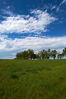 Midwest Summer Sky Panorama. Rest Area along Interstate 29 in South Dakota. Image 1 of 9 taken with a Nikon D3x and 24 mm f/1.4G lens (ISO 100, 24 mm, f/11, 1/800 sec).