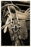 A weathered and worn saddle whispers it's storied life ...<br /> <br /> Craig W Cutler Photography.<br /> DesignLIFE by Craig W. Cutler Photography.