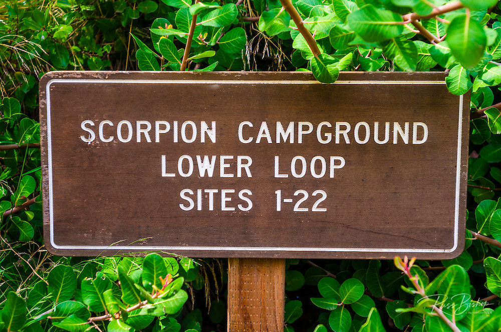 Scorpion Campground sign, Santa Cruz Island, Channel Islands National Park, California USA