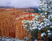 Storm over Silent City, Bryce Canyon, National Park, Utah