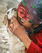 Young girl and her lamb. Trekking up and down the Rivak valley, spending time in the high pasture etc. Nearby Khorog.<br /> <br /> The town of Khorog (2200m), is the capital of the Gorno-Badakhshan Autonomous Province (GBAO) in Tajikistan. It is situated in the Pamir Mountains (ancient Mount Imeon) at the confluence of the Gunt and Panj rivers.<br /> The city is bounded to the south and to the north by the deltas of the Shakhdara and Gunt rivers, respectively. The two rivers merge in the eastern part of the city flow through the city, dividing it almost evenly until its delta in the river Panj, also being known as Amu Darya, or in antiquity the Oxus on the border with Afghanistan. Khorog is known for its beautiful poplar trees that dominate the flora of the city.<br /> Khorog is one of the poorest areas of Tajikistan, with the charitable organization Aga Khan Foundation providing almost the only source of cash income. Most of its inhabitants are Ismaili Muslims.<br /> <br /> Tajikistan, a mountainous landlocked country in Central Asia. Afghanistan borders it to the south, Uzbekistan to the west, Kyrgyzstan to the north, and People's Republic of China to the east. Tajikistan also lies adjacent to Pakistan separated by the narrow Wakhan Corridor.<br /> Tajikistan became a republic of the Soviet Union in the 20th century, known as the Tajik Soviet Socialist Republic.<br /> It was the first of the Central Asian republic to gain independence in December 1991.