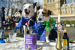 """© Licensed to London News Pictures. 10/03/2019. LONDON, UK. Dogs in Victoria Park Gardens, next to the Houses of Parliament, for """"Brexit is a Dog's Dinner"""", a protest to urge MPs to vote to ensure that a no-deal Brexit is avoided and to give the people of the UK a final say.  Next week, there will be a series of up to three votes in the House of Commons where MPs will vote on whether to accept Theresa May's Brexit deal.  Photo credit: Stephen Chung/LNP"""