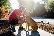 Comm dog leash photos