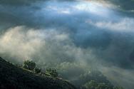 Coastal fog and hills at sunrise, in the rural countryside near Cambria, San Luis Obispo County, California