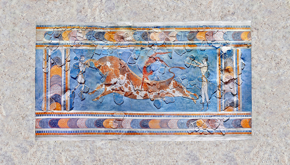 The Minoan 'Bull leaping' fresco depicting an athlete leaping over a bulls back,  Knossos-Palace, 1600-1400 BC . Heraklion Archaeological Museum.<br /> <br /> there are 3 participants, two white skinned women and one brown skinned man. One female athele is restraining the bull ny the horns to slow it down as the male athlete performs a backward summersault ober the bulls back. The second female athlete waits to catch the leaper.<br /> <br /> The fresco was found on the east side of the palace of Knossos together with fragments depicting different stages of bull leaping. .<br /> <br /> If you prefer to buy from our ALAMY PHOTO LIBRARY  Collection visit : https://www.alamy.com/portfolio/paul-williams-funkystock/minoan-art-artefacts.html . Type -   Heraklion   - into the LOWER SEARCH WITHIN GALLERY box. Refine search by adding background colour, place, museum etc<br /> <br /> Visit our MINOAN ART PHOTO COLLECTIONS for more photos to download  as wall art prints https://funkystock.photoshelter.com/gallery-collection/Ancient-Minoans-Art-Artefacts-Antiquities-Historic-Places-Pictures-Images-of/C0000ricT2SU_M9w
