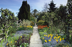 Spring in the High Garden at Great Dixter. Tulips 'West Point' with forget-me-nots in the foreground. Flagstone path
