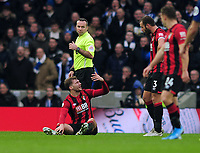 Football - 2019 / 2020 Premier League - Brighton & Hove Albion vs. AFC Bournemouth<br /> <br /> More injuries for Bournemouth : Jack Stacey goes down injured after they had already used their 3 substitutes , leaving his team with 10 men, at The Amex.<br /> <br /> COLORSPORT/ANDREW COWIE