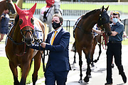 Masked trainers prior to Race 7, Haunui Farm King's Plate (G3) 1200.<br /> Vodafone Derby Day at Ellerslie Race Course, Auckland on Sunday 7th March 2021 during lockdown level 2.<br /> Copyright photo: Alan Lee / www.photosport.nz