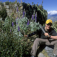 Cordillera Vilcabamba, Andes Mountains, Peru. Ben Wiltsie poses while helping to clear an archaeological site on Cerro Victoria.