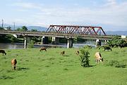 Georgia, Zugdidi rural landscape
