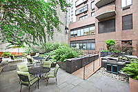 Garden at 157 East 37th Street