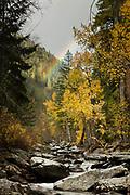 Kootenai Creek near Stevensville Montana.