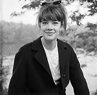 Françoise Hardy - 1965 - Exclusif - A négocier, pas de forfait ni internet