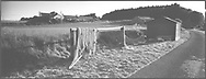 Salmon nets used for fishing by the sweep netting method using a coble (boat) on the river North Esk, Kinnaber, Angus.<br /> Ref. Catching the Tide 38/00/34a (14th June 2000)<br /> <br /> The once-thriving Scottish salmon netting industry fell into decline in the 1970s and 1980s when the numbers of fish caught reduced due to environmental and economic reasons. In 2016, a three-year ban was imposed by the Scottish Government on the advice of scientists to try to boost dwindling stocks which anglers and conservationists blamed on netsmen.