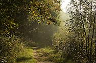 Herfst in Nationaal Park Lauwersmeer