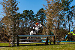 March 22, 2019 - Raeford, North Carolina, US - March 23, 2019 - Raeford, N.C., USA - SHARON WHITE of the United States riding COOLEY ON SHOW competes in the cross country CCI-4S division at the sixth annual Cloud 11-Gavilan North LLC Carolina International CCI and Horse Trial, at Carolina Horse Park. The Carolina International CCI and Horse Trial is one of North AmericaÃ•s premier eventing competitions for national and international eventing combinations, hosting International competition at the CCI2*-S through CCI4*-S levels and National levels of Training through Advanced. (Credit Image: © Timothy L. Hale/ZUMA Wire)
