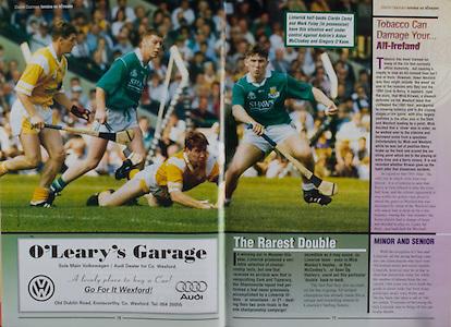 All Ireland Senior Hurling Championship - Final,.01.09.1996, 09.01.1996, 1st September 1996,.01091996AISHCF, .Wexford v Limerick,.Wexford 1-13, Limerick 0-14,.O'Leary's Garage, Wexford,