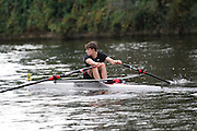 Crew: 69 - Worcester RC WRR-Hunt    Event: J15A.1x<br /> <br /> Afternoon Division<br /> Worcester Small Boats Head 2016<br /> <br /> To purchase this photo, or to see pricing information for Prints and Downloads, click the blue 'Add to Cart' button at the top-right of the page.