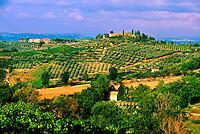 Vineyards around San Gimignano, Tuscany, Italy