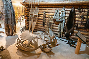 """Animal pelts, locked moose antlers, snowshoes, traps at George Johnston Museum, Alaska Highway, Teslin, Yukon, Canada. The Alaska Highway was built as a military road during World War II in just 9 months in 1942, to link existing airfields via Canada to the territory of Alaska. The ALCAN Highway (a military acronym for Alaska-Canada) opened to the public in 1948. It begins in Dawson Creek, British Columbia, and runs via Whitehorse, Yukon to Delta Junction, Alaska. The """"Alaskan Highway"""" is comprised of British Columbia Highway 97, Yukon Highway 1 and Alaska Route 2. While the ALCAN measured 2700 kilometers (1700 mi) upon completion in 1942, by 2012 it was rerouted and shortened to 2232 km (1387 mi). Once legendary for being a rough, challenging drive, the highway is now paved over its entire length. Delta Junction, at the end of the highway, claims """"Historic Milepost 1422"""" where the Alaska Highway meets the Richardson Highway, which continues 96 mi (155 km) to the city of Fairbanks at Historic Milepost 1520, often (but unofficially) regarded as the northern portion of the Alaska Highway (although its Mileposts are measured from Valdez)."""