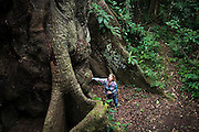 American ecotourist Liana Welty looks up from the base of a giant Kapok tree in the Manu National Park Reserve Zone, Peru on September 7, 2005.
