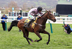 Pentland Hills ridden by Nico de Boinville on their way to victory in the JCP Triumph Hurdle during Gold Cup Day of the 2019 Cheltenham Festival at Cheltenham Racecourse.